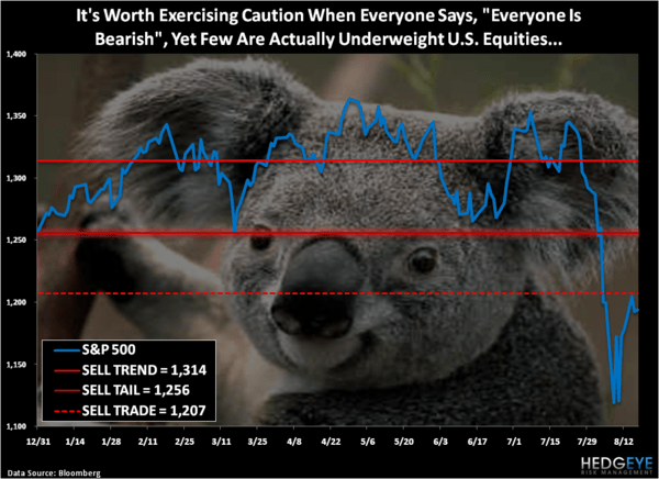 Bullish Babble - Chart of the Day