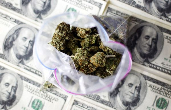 Poll of the Day Recap: Investing Green Bills in Green (Medical) Pot - m2