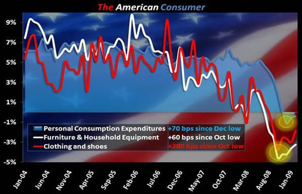 THE AMERICAN CONSUMER - amer