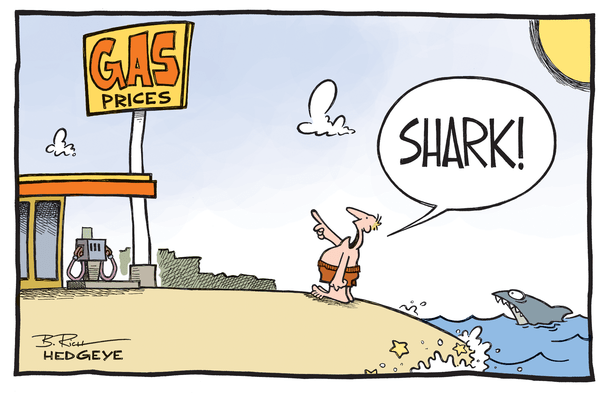 The Best of This Week From Hedgeye - shark cartoon June 2014