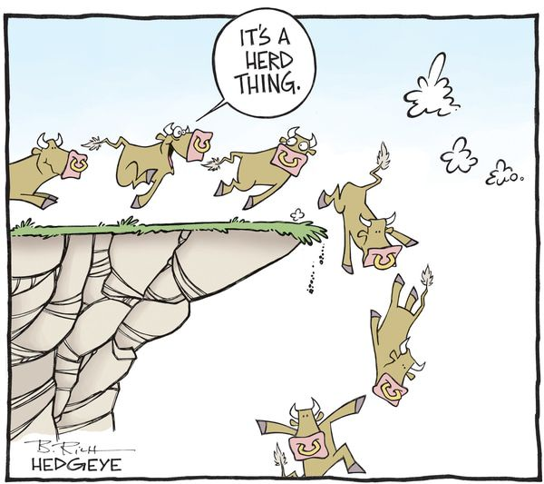 This Week In Hedgeye Cartoons - Bull herd cartoon 03.18.2016