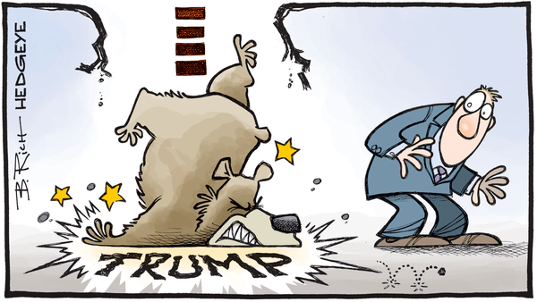 7 Cartoons Capture Everything An Investor Needs to Know Post-Election - Trump bear 12.20.2016