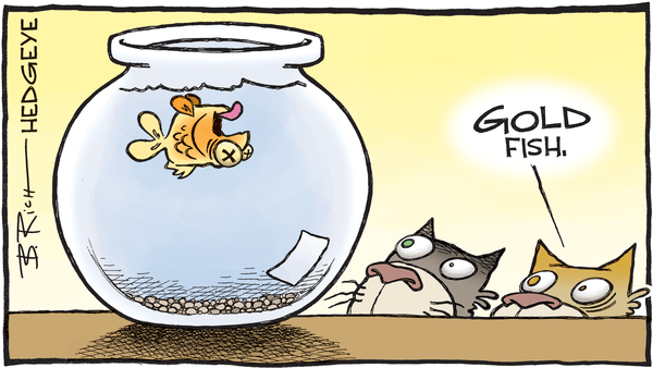 Cartoon of the Day: Belly Up? - GOLDfish cartoon 01.04.2016