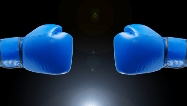 Economic Acceleration? Your Decision Will Impact Your Portfolio Performance - boxing gloves image