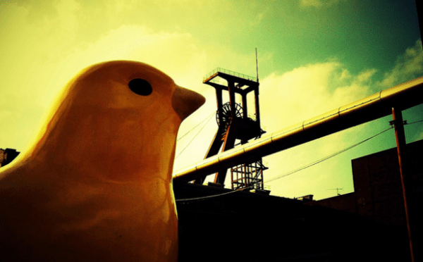 The Bear Market in Commodities: Canary in the Coal Mine? - canary coal mine