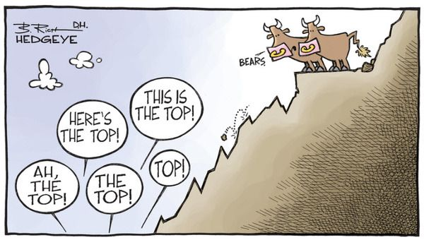 10 Cartoons Capture This Epic Bull Market - top calling bears
