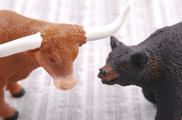 The Top 5 Most Consensus (Bullish & Bearish) Wall Street Bets - bull and bear12