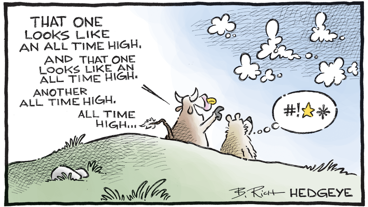 12 Cartoons For A Gravity Defying Stock Market