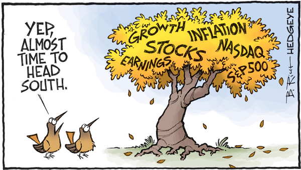 Investing Ideas Newsletter - 11.08.2018 heading south cartoon