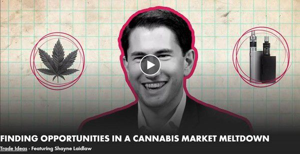Opportunities in a Cannabis Market Meltdown | A Real Vision Interview With Hedgeye's Shayne Laidlaw - shayne