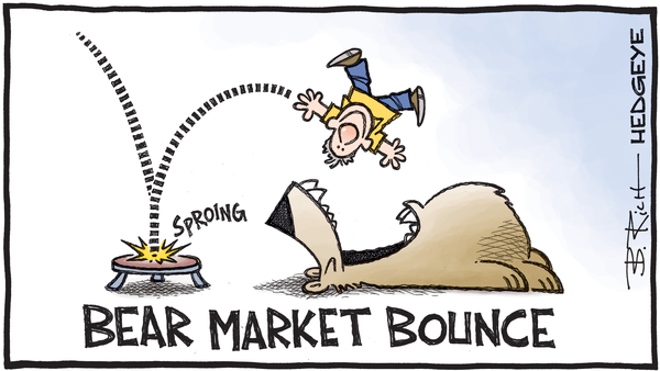 Markets Bounce as Real Economy Staggers - 05.26.2020 bear market bounce cartoon