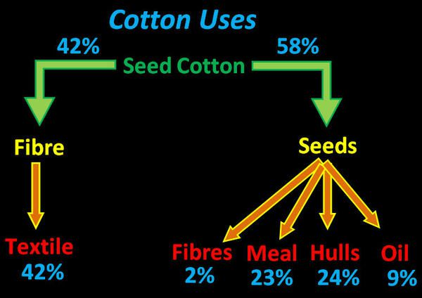 Apparel: We Just Got More Bearish - Cotton Uses