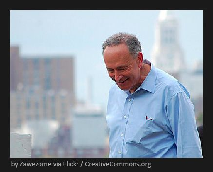 EARLY LOOK: The Incorrigible Hand - Schumer