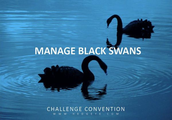 MANAGE BLACK SWANS: CONF CALL -  Black Swans